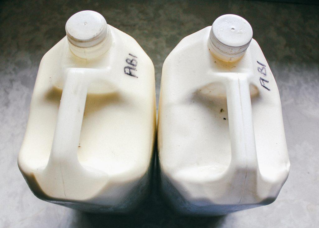 Raw milk ready to pasteurise